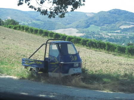 The Ape is commonly used by farmers (you don't need any driving licence to drive it)