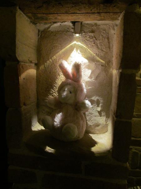 Costanza's rabbit