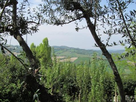 Panoramic view - vista panoramica